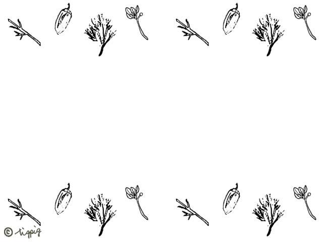 ペン画のスケッチ風のどんぐりと葉っぱの秋のイラストのフレームのフリー