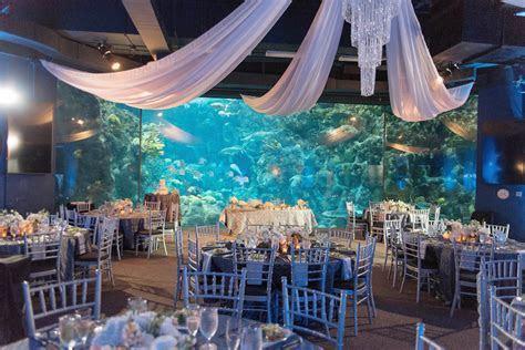 Modern, Under the Sea Tampa Wedding   The Florida Aquarium