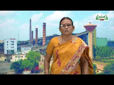 உலகம் யாவையும் Std 10 சமூக அறிவியல் தமிழ்நாடு இயற்கை பிரிவுகள் பகுதி 02 Kalvi TV