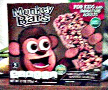 monkey bars2