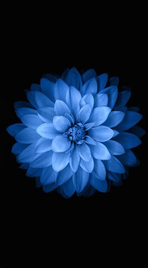 blue iphone wallpaper bing images blue wallpaper