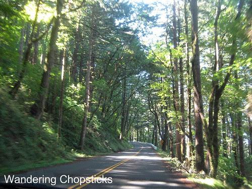 11 Chasing Waterfalls - Columbia River Gorge - Oregon 10