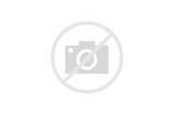 Images of Pinto Beans Vs Black Beans