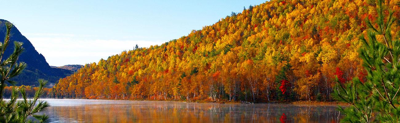 Baxter State Park Fall Foliage