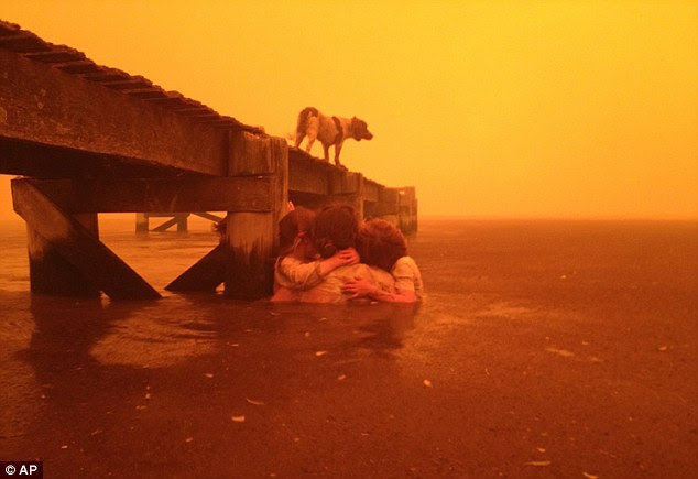 Escaping the flames: The family's pet dog Polly sought safety on the jetty as the family huddled together in the water
