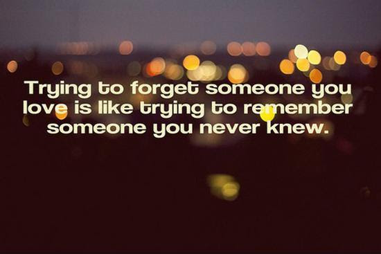 Never Forget Quotes Sayings Never Forget Picture Quotes