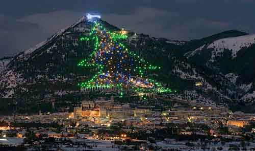 11-most-spectacular-christmas-trees-in-the-world-artnaz-com-6