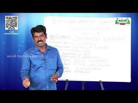 11th  Accounting தேய்மானக்கணக்குகள் அலகு10 பகுதி 1 அத்தியாயம்  Kalvi TV