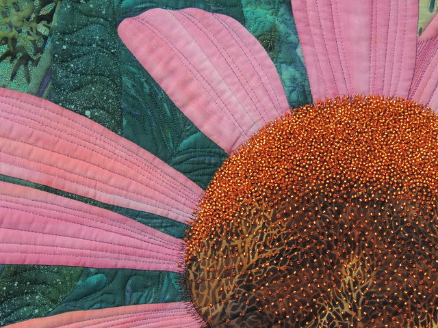 Echinacea - Detail