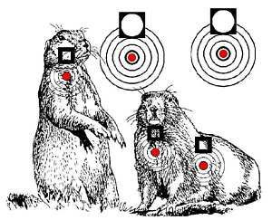 Details about Printable Air Rifle Targets 750+ Designs on CD ...