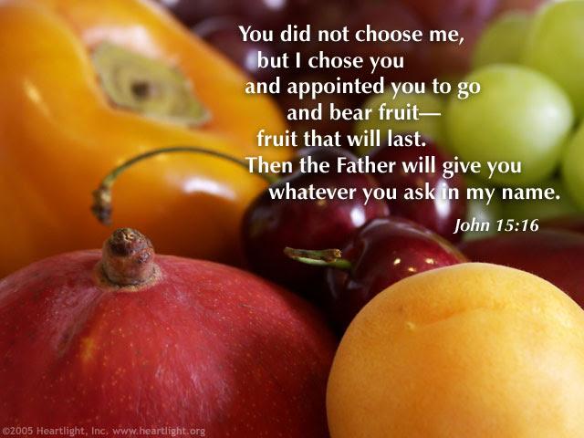 Inspirational illustration of John 15:16