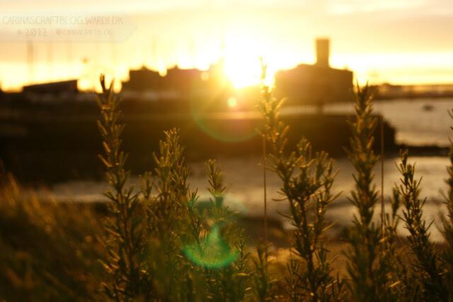 Sunrise, December 7, 2012 - 9