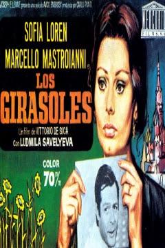 Poster Los Girasoles