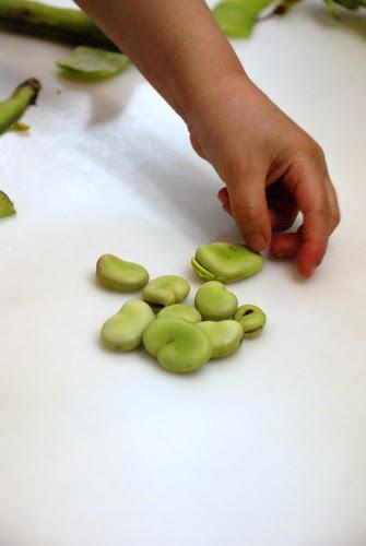 Fava Bean Cavatelli