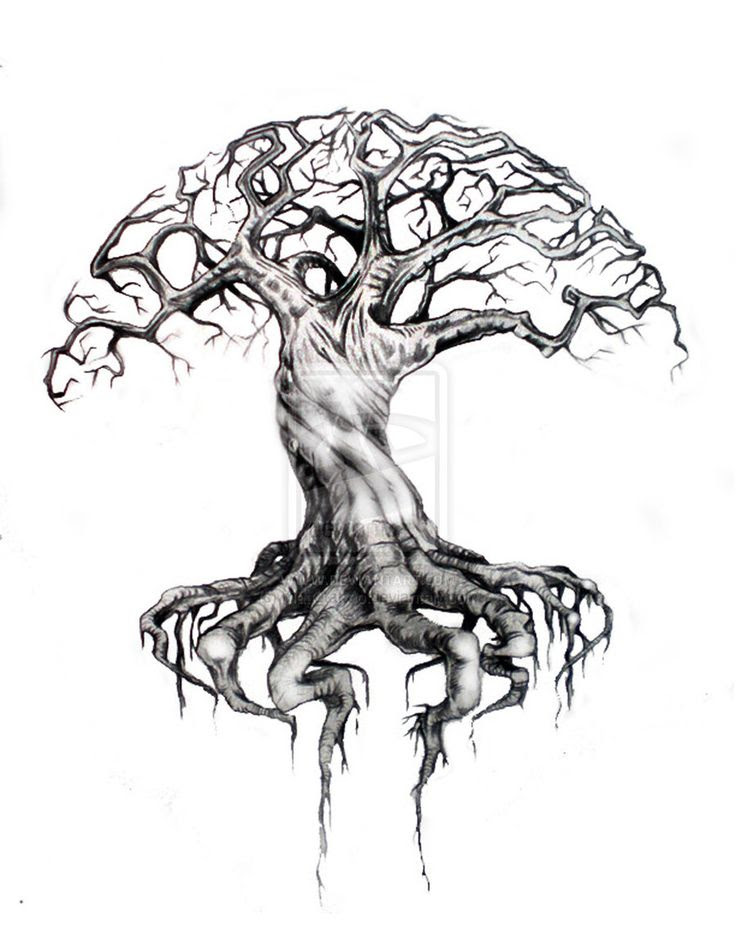 Pencil Drawing Of Tree Of Life At Getdrawingscom Free For