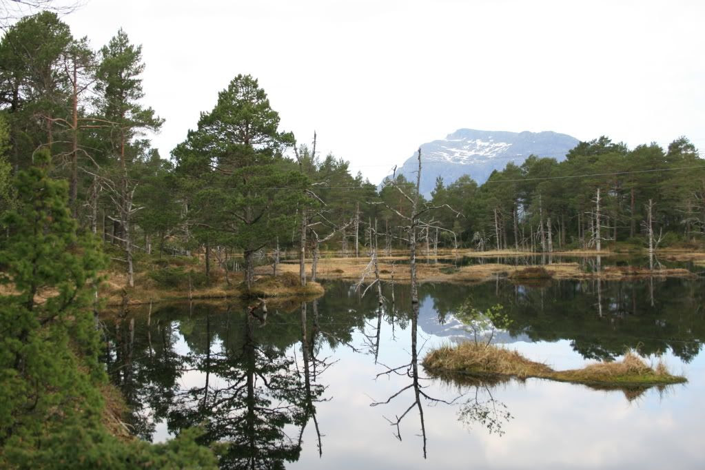Et vatn som man passerer på veg mot toppen av Uførefjellet