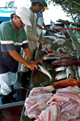 Pescadores artesanales en las Galápagos (Ecuador).