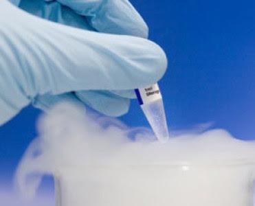 Donación de embriones congelados, algunos datos de EEUU