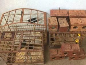 Gaiolas e pássaros apreendidos em Jaíba (Foto: Polícia Militar/Divulgação)