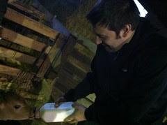 Forrest Feeding a Calf