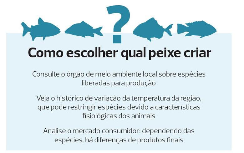 como-escolher-qual-peixe-criar-cativeiro (Foto: Filipe Borin/Ed. Globo)