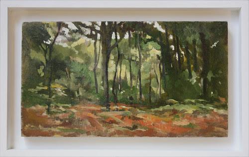 Nuthurst Woodland