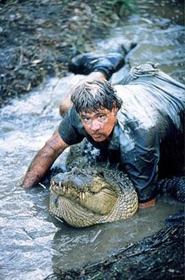 crocodile hunter c