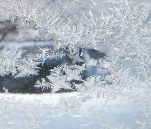 window frost- 2010 Helsinki, Töölö