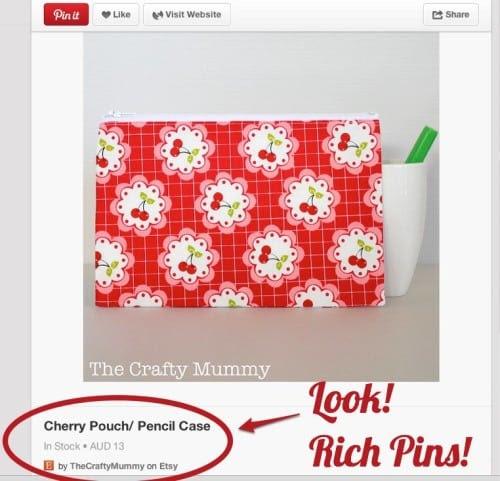 rich-pins-500x481