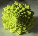 cauliflower showing fractal geometry