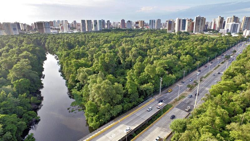 Resultado de imagem para meio ambiente parque coco