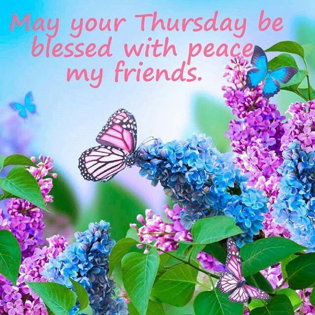 May Your Thursday Be Blessed With Peace My Friends Pictures Photos