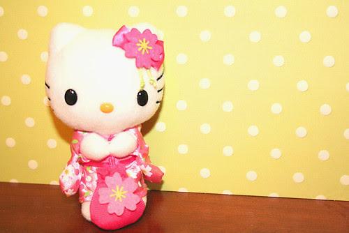 Blossom Kitty