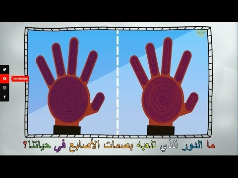Med devrul lezi telabuhu basamatul esabiı fi hayatıne - ما الدور الذي تلعبه بصمات الأصابع في حياتنا؟