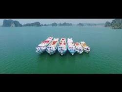 Quay phim quảng cáo tàu vận tải Nguyên Việt Quảng Ninh