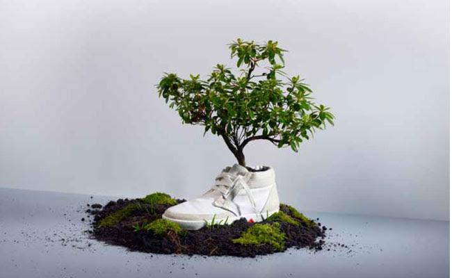 Pesquisa internacional Retail Trend 2012 revela o surgimento de uma nova geração de consumidores (foto: divulgação)