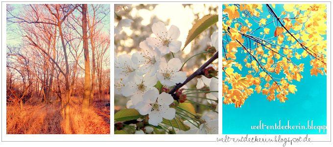 http://i402.photobucket.com/albums/pp103/Sushiina/cityglam/blog11_zps3471238b.jpg