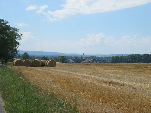 Balf through the hayfields
