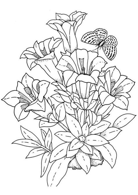 print coloring image coloring challenges  adults
