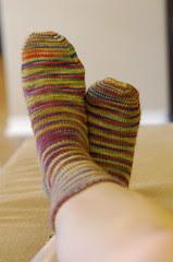 Wildflower Socks
