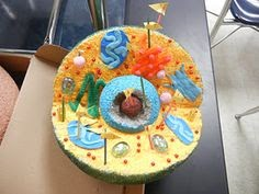 5th Grade MBES Blog: Cell Model Project- Due September 9th