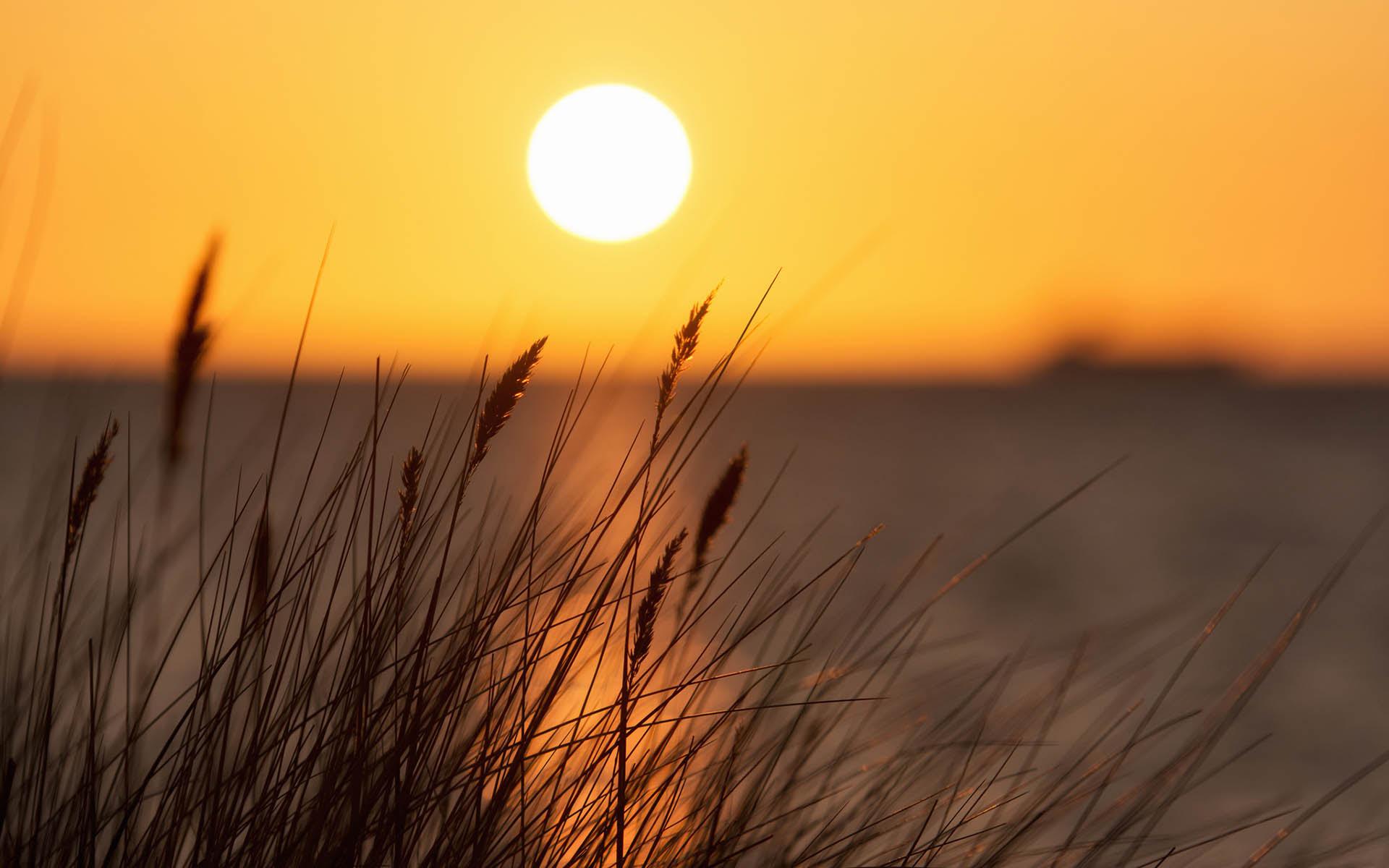 Sun Background HD Desktop Wallpaper 14578 - Baltana