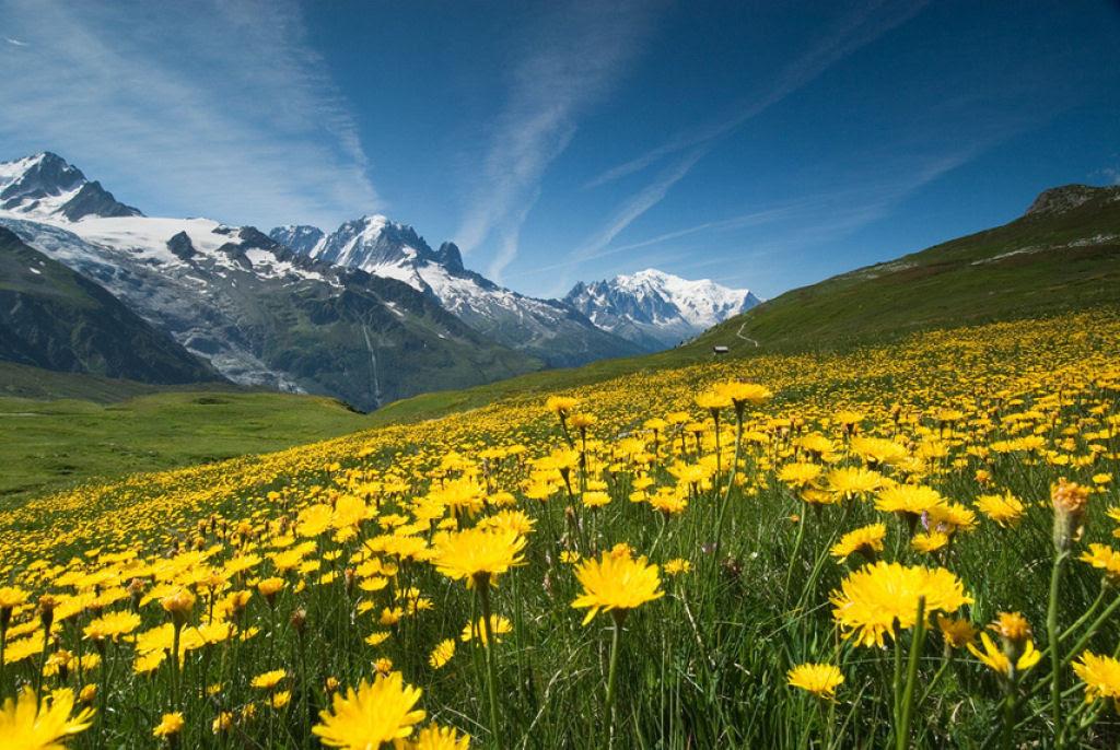 Fotografias que celebram a beleza da Terra 09