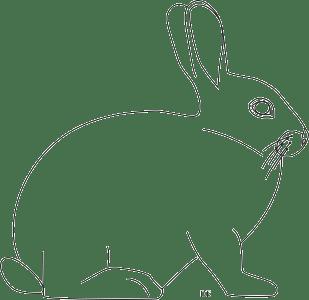 Hase Schablone 2 | PDF Drucken Kostenlos