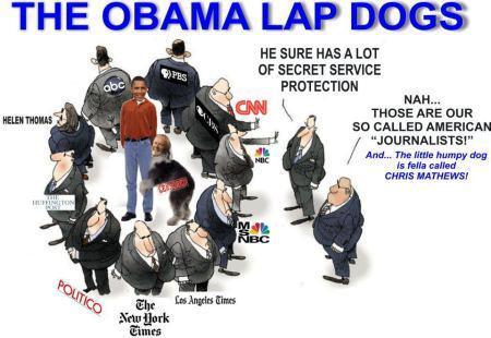 http://bellalu0.files.wordpress.com/2012/09/obama-lap-dogs.png