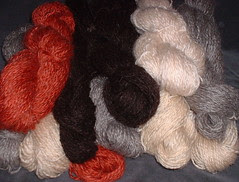 pile yarn