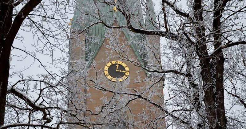 16 domkyrkan