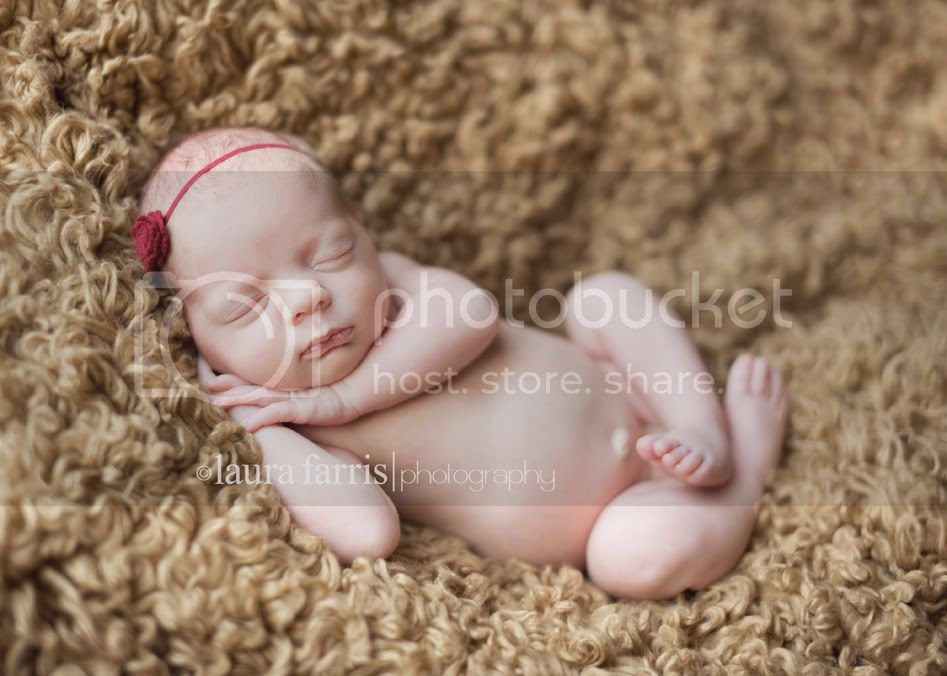 boise newborn photographer