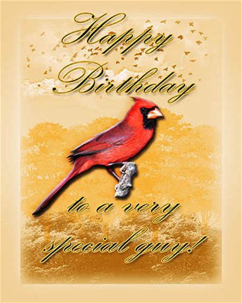 Cardinal Birthday For Him. Free Birthday for Him eCards