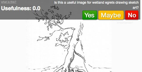 Wetland Egrets Drawing Sketch Art images - Sprixi - Free images to choose and use!